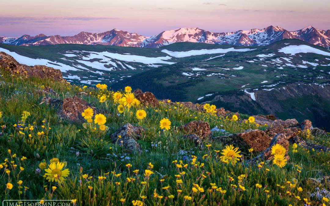 Rocky Mountain National Park Series: Estes Park Photographer and Author Wins National Award