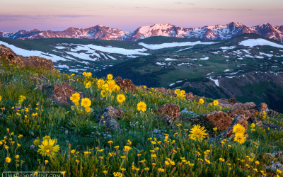 Rocky Mountain National Park Series: Estes Park Photographer and Author Wins National Award