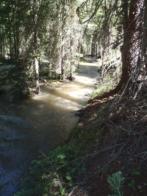 ROCKY MOUNTAIN NATIONAL PARK SERIES – GRAND DITCH LEAK