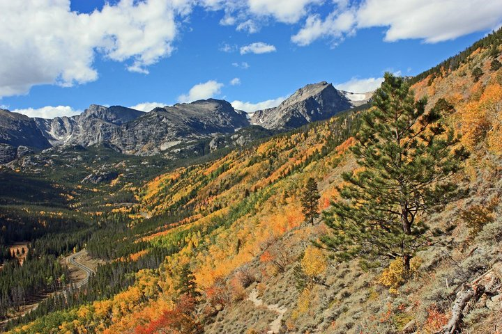 Rocky Mountain National Park Series – Finding Fall Colors This Weekendd