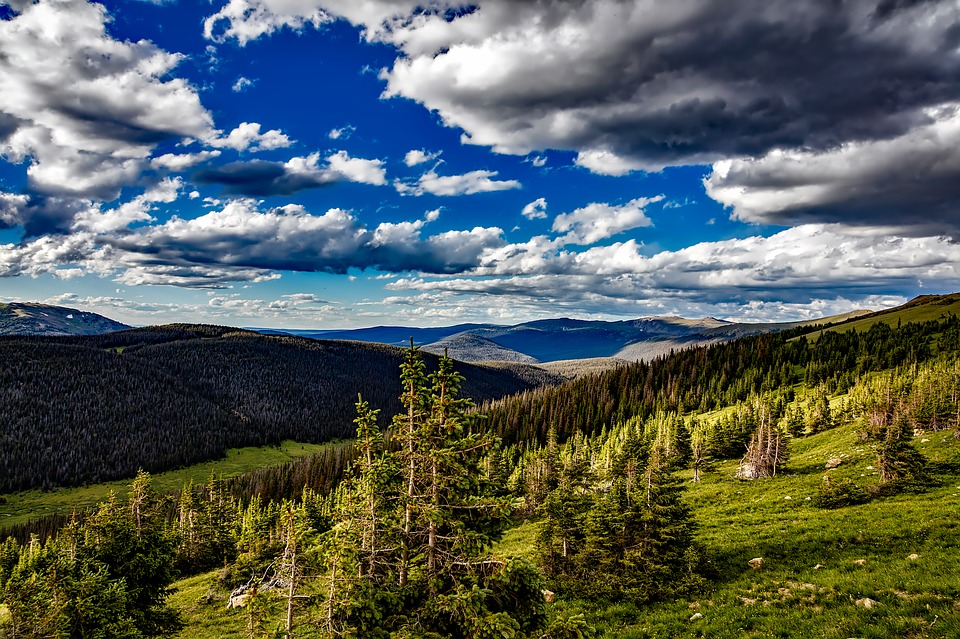 Rocky Mountain National Park Series – Firewood Lottery!