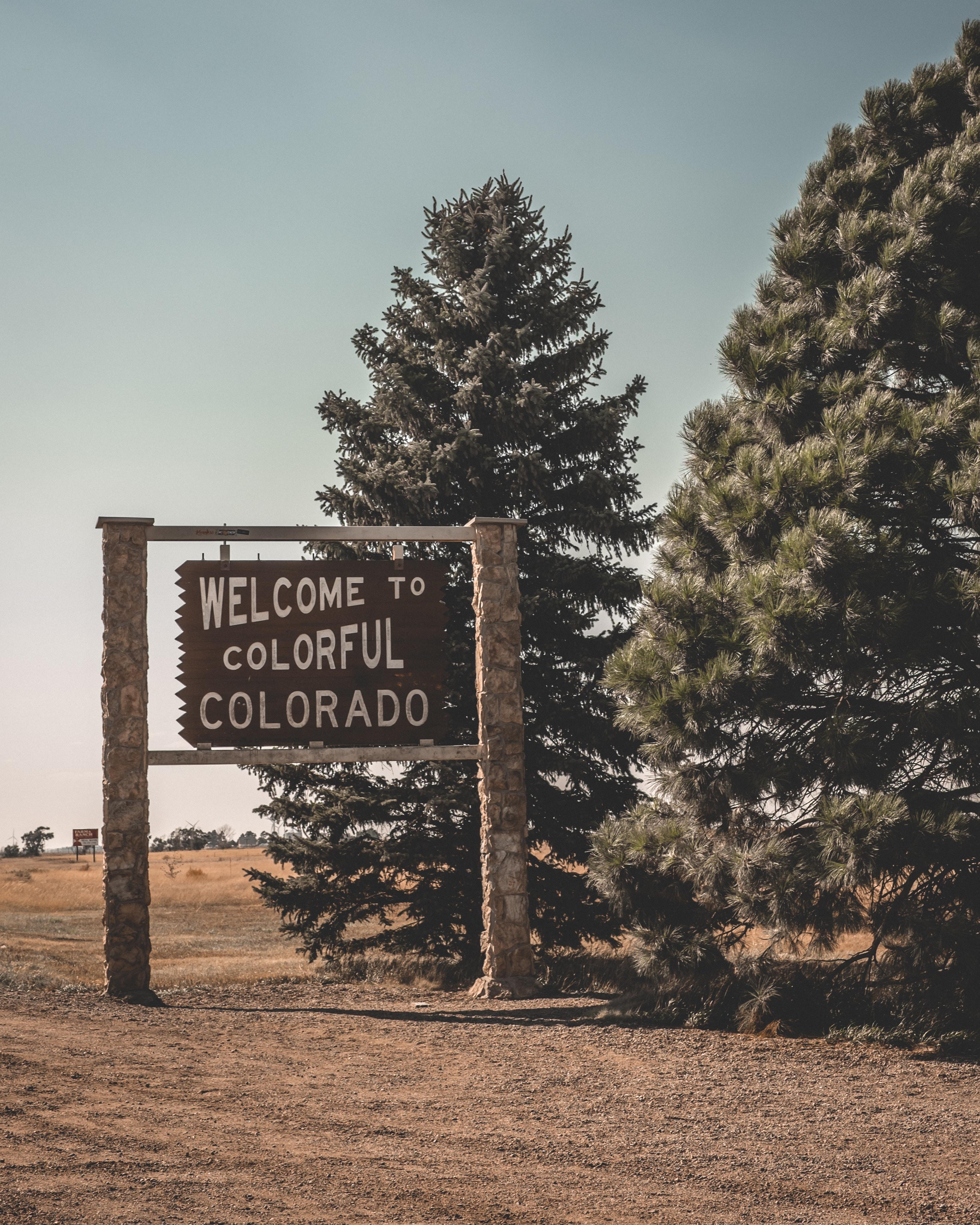Runner Troy